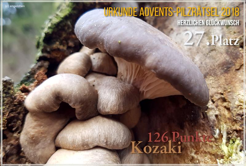 251206-2018-27-kozaki-jpg