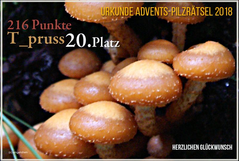 251664-2018-20-t-pruss-jpg