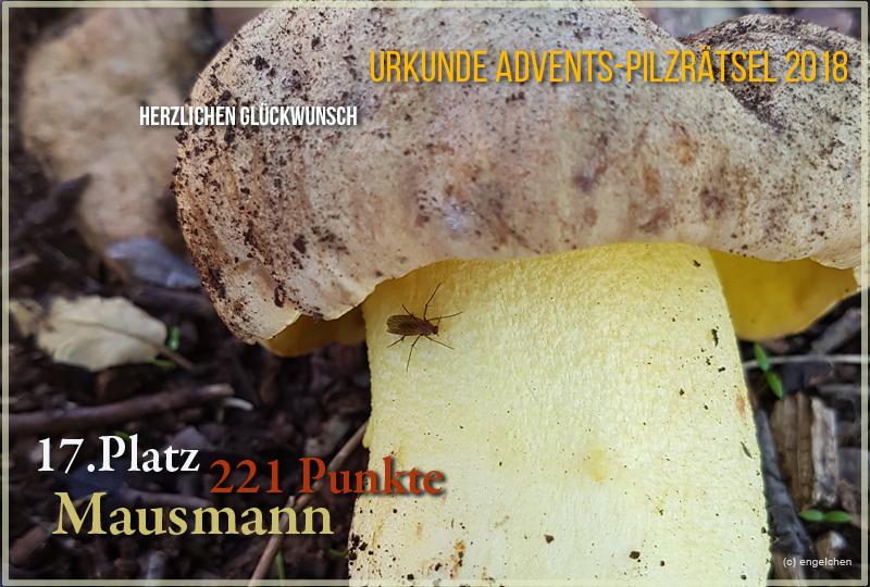 251712-2018-17-mausmann-jpg