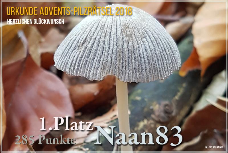 252344-2018-1-naan83-jpg