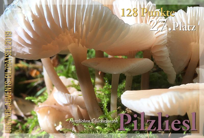 300429-27-128-pilzliesl-jpg