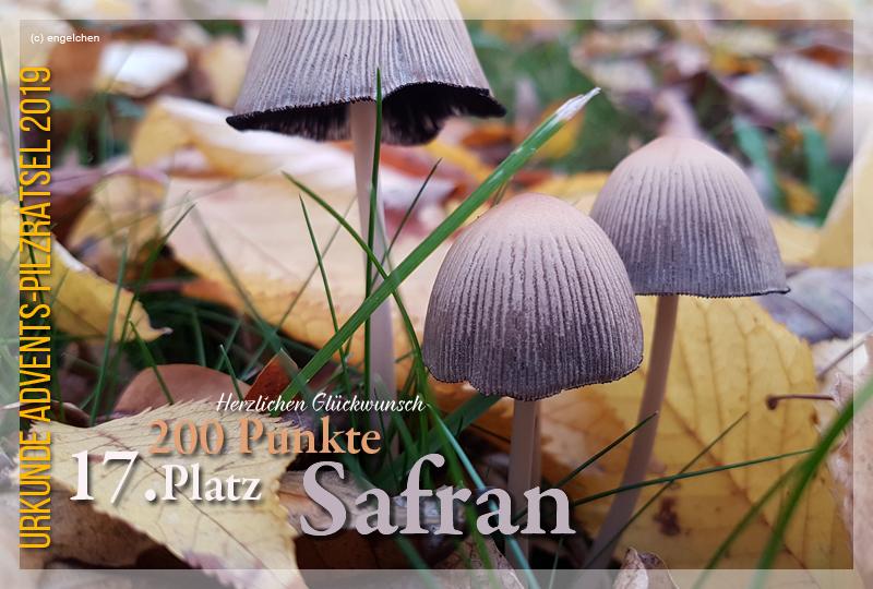 301029-17-200-safran-jpg