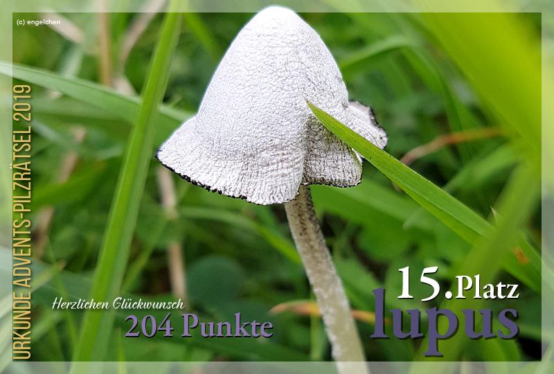 301149-15-204-lupus-jpg