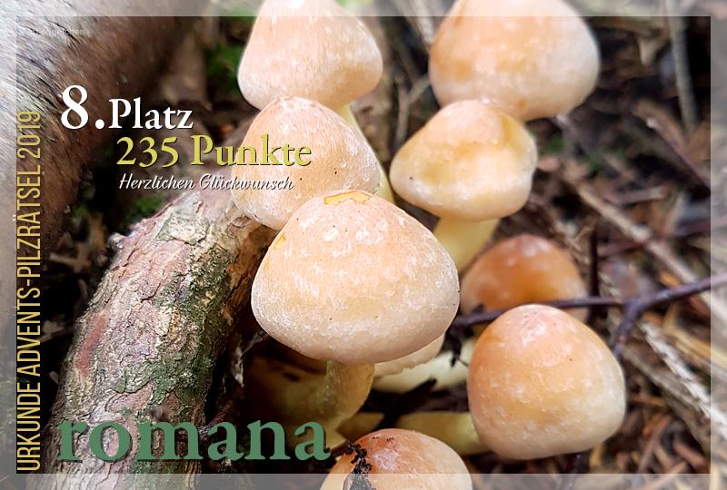 301421-8-235-romana-jpg