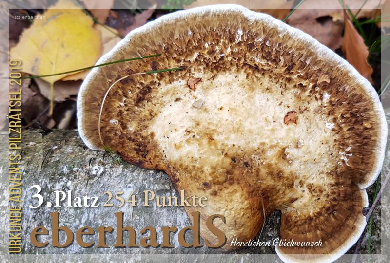 301516-3-254-erberhards-jpg