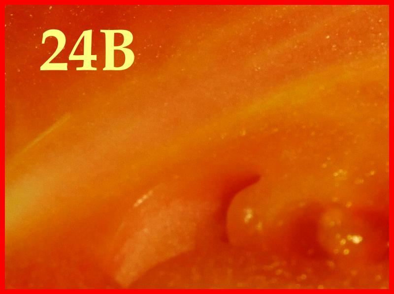 358472-1-r%C3%A4tsel-jpg